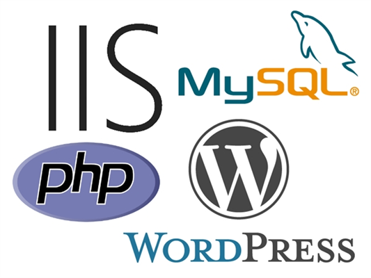 HOW TO: Install WordPress on an IIS Server
