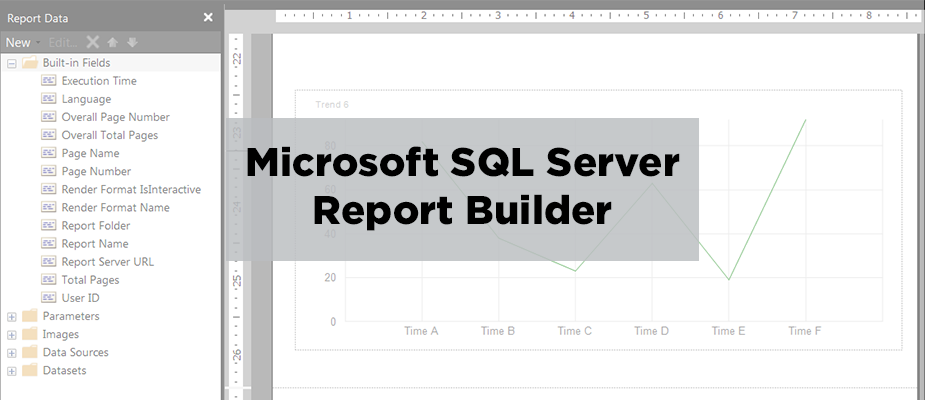 Microsoft SQL Server Report Builder