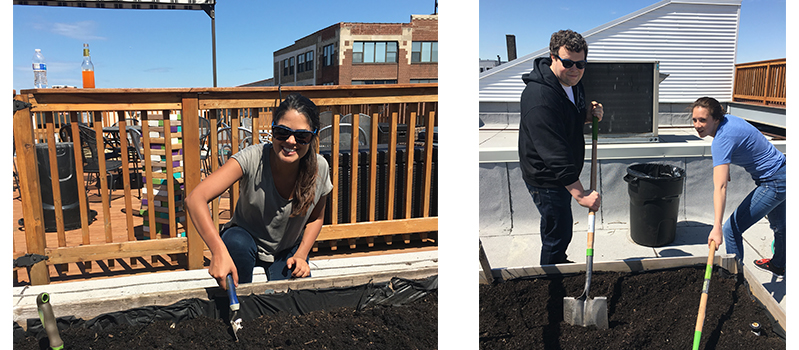 Lexi, Heather, and Jimmy prep the soil for planing in May in the Chicago rooftop garden.