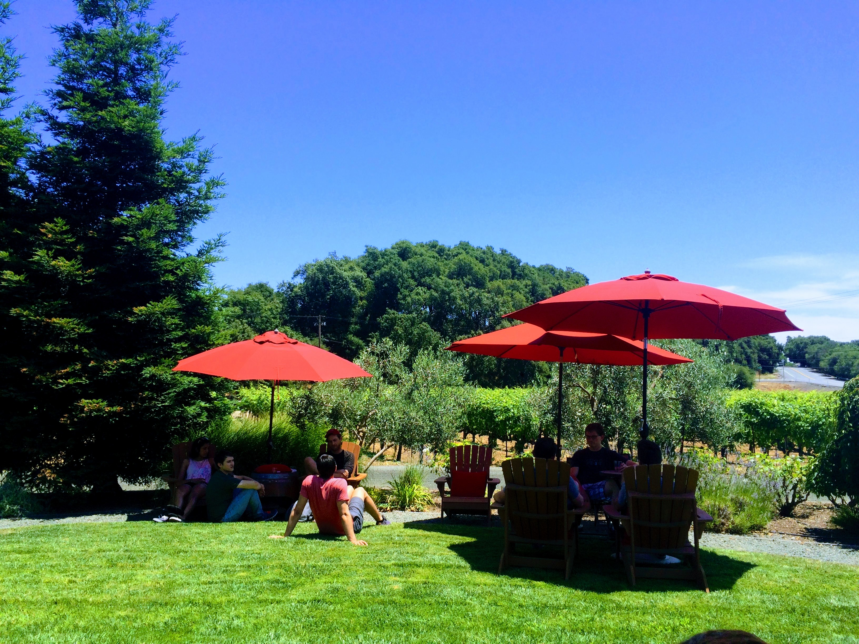 Sonoma Maurtison Winery