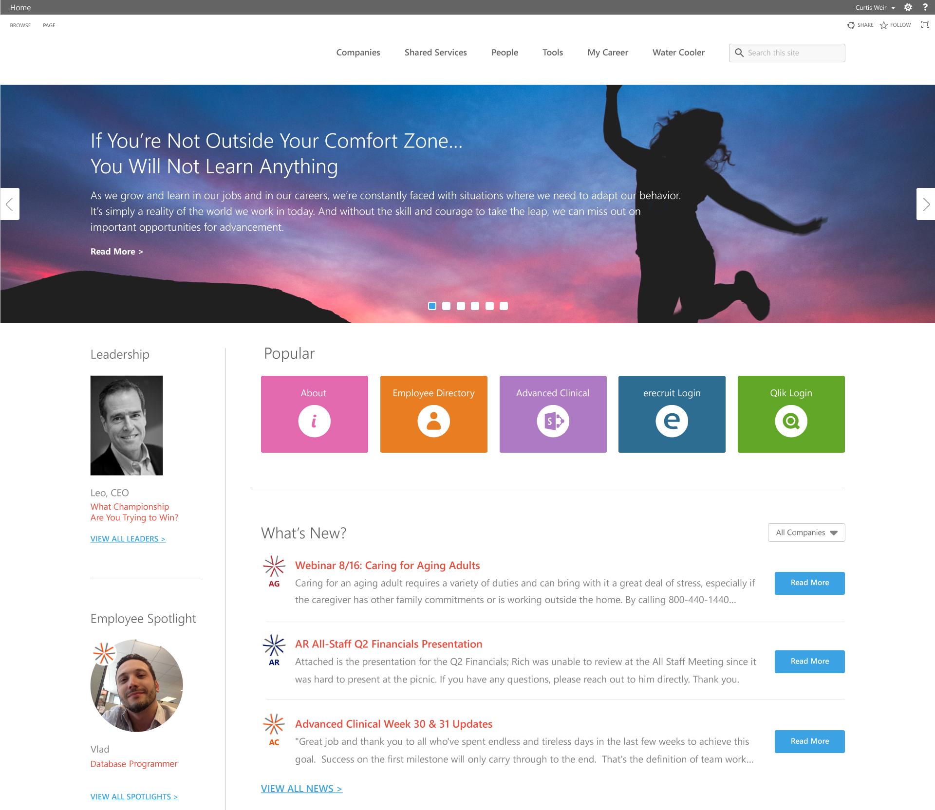 Sharepoint Look And Feel Customization Dmc Inc