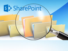 SharePoint Enterprise Search
