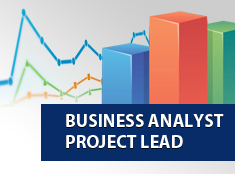 Business Analyst Project Lead